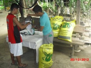 rice distribution 2012 3