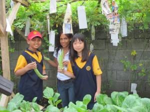 vegetables_11