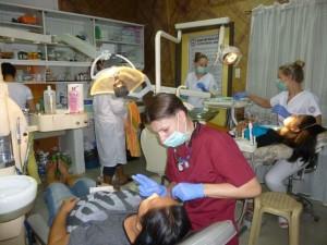 dentists 2015(9)
